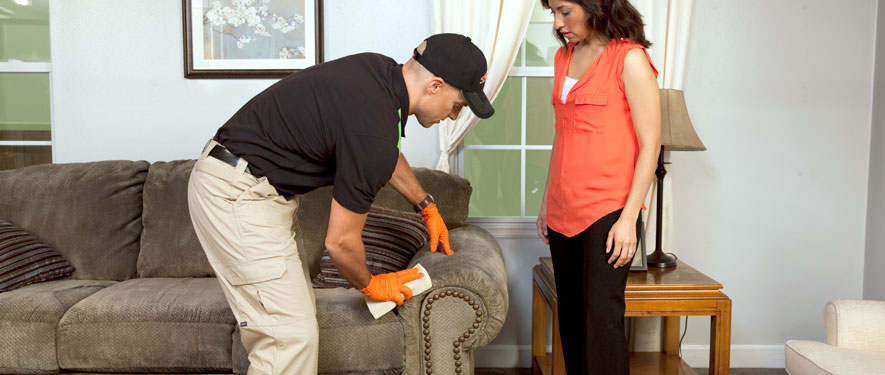 Chesterfield, MI carpet upholstery cleaning
