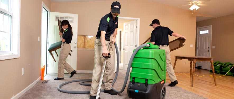 Chesterfield, MI cleaning services